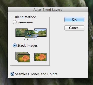 Auto Blend Layers Dialogue Box